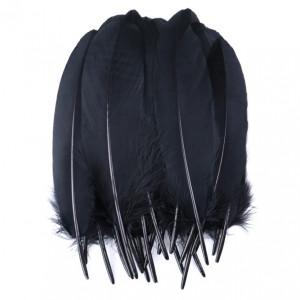 Набор перьев для декора 10 шт 19см Черные #12123